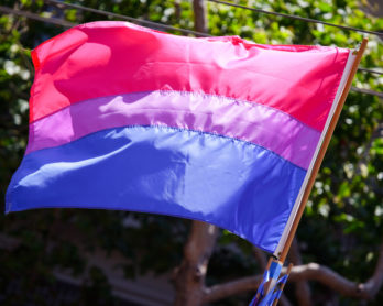 Image of bisexual pride flag by Peter Salanki.